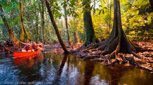Une siaons en Guyane : photographie de canoë