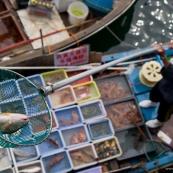 Pêche à Hong-Kong