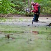 Homme au milieu d'une mare, ÈquipÈ de waders, en train de relever un piËge ‡ tritons posÈ la veille (bottle trapping). L'objectif est de recensÈ la population d'amphibien de la mare. Protection des espËces, suivi des populations, dans le cadre d'un contrat Natura 2000. ModËle : Hubert Dupiczak