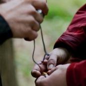 Prise de vue de la face ventrale d'un triton crÍtÈ. Lors du recensement des tritons, la face ventrale des tritons crÍtÈs est une empreinte gÈnÈtique : cela permet de savoir, d'une sÈance ‡ une autre ou d'une annÈe sur l'autre, si les individus sont recapturÈs ou non. Protection des espËces, suivi des populations, dans le cadre d'un contrat Natura 2000.