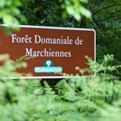 Panneau de signalisation de la forÍt domaniale de Marchiennes, gÈrÈes par l'ONF.