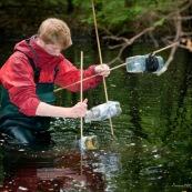 Un ecogarde pose des piËges ‡ tritons en forÍt, dans une mare. Ils est ÈquipÈ avec des waders et immerge un des piËges sous l'eau. Le soir, pour capture des tritons (amphibiens) pendant la nuit. Protection des espËces, suivi des populations, dans le cadre d'un contrat Natura 2000. ModËle : Hubert Dupiczak