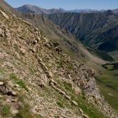 Troupeau de brebis en pleine montagne, grimpant vers les crÍtes, passage technique hors chemin, hors sentier. Brebis en ligne en train de grimper.
