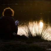 Jeune femme lisant, ‡ la nuit tombante, au bord d'une mare entourant le Parc du HÈron (parc urbain autour du lac du hÈron) ‡ Villeneuve d'Ascq.   Vue de dos, livre ouvert, soleil se reflÈtant dans l'eau de la mare.