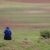 Paysanne peruvienne