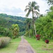 Arivée à Ouanary Guyane.