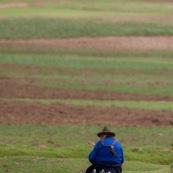 Paysanne peruvienne assise au bord de ses champs, de dos. Pérou.