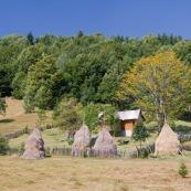 Maison en bordure de forÍt dans la campagne roumaine. Petit enclos en bois, et meules de foins ‡ l'ancienne. Famille se reposant au soleil dans le jardin. Roumanie.