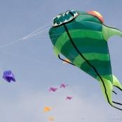 Cerf-volant.  Rencontres Internationales de Cerfs-Volants de Berck sur Mer 2007.  Cerfs-volant reprÈsentant des poissons, en vol dans le ciel.  Cerf-Volant. Mer