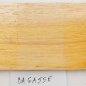 Bagassa guianensis