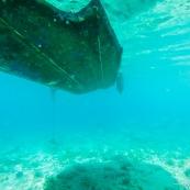 Fonds sous-marin de Guadeloupe.  Vue sous-marine. Sous l'eau. Plongee. Snorkeling. Coque de bateau.