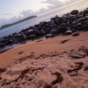 Guyane. Iles du salut. Sur l'ile saint joseph. PLage avec eau transparente et cocotiers. Vue sur l'ile du diable.