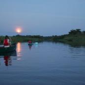 Marais de Kaw en Guyane au leve du soleil. En canoe et en kayaks. Lune en arriere plan. Leve de lune.