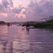 Marais de Kaw en Guyane au leve du soleil. En canoe et en kayaks.