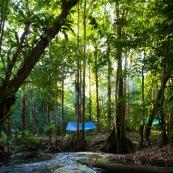 Carbet bache en Guyane (hamac tendu entre deux arbres et bache en plastique tendue au dessus). Riviere (crique) et foret tropicale amazonienne.