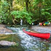 Canoes en Guyane, leve de soleil en foret tropicale amazonienne. Sur une crique (riviere). Passage d'un saut a la cordelle. Crique Memora.