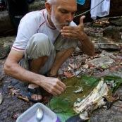 Peche a l'Aymara. Hoplias aimara. En Guyane, foret tropicale amazonienne. Peche avec une trappe. Poisson en train d'etre mange apres cuisson sur le feu.
