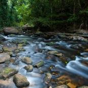 Riviere en Guyane, foret tropicale amazonienne, femme sur un rocher, dans la foret. Crique Memora.