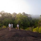 Savane roche en Guyane, pres de la roche canari zozo vers l'Oyapock. Le matin au lever du soleil. Touristes, randonneurs. Tourisme vert.
