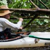 Kayak, kayaliste, en Guyane, foret tropicale amazonienne. Sur une riviere (crique). En train de couper un arbre tombe sur la riviere (chablis) avec une machette (sabre).