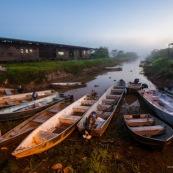 Debarcadere au marais de kaw. Guyane. Au lever du jour. Maison du parc naturel et pirogues, bateaux.