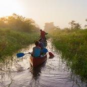Marais de kaw en Guyane au lever du soleil. En canoe et kayak. Tourisme. Touristes.
