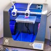 Imprimante 3D. Impression 3D plastique. Double extrusion.  Impression d'une tortue.