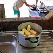 Decoupe du manioc (cramagnoc) dans un carbet en foret. Perou. Dans la cuisine. Le manioc est en train d'etre cuit.