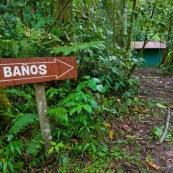 Toilettes en espagnol : banos. Dans la foret.