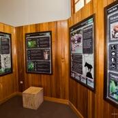 Centre d'interpretation du parc national Yanachaga Chemillen. Panneaux explicatifs. Perou.