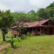 Maison en bois en foret tropicale. Carbet. Au Perou.