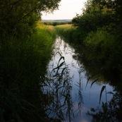 Canal dans les marais de Guines.