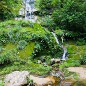 Cascade en forêt tropicale.