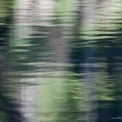 Reflets dans l'eau composition graphique fond couleur vert ondulations