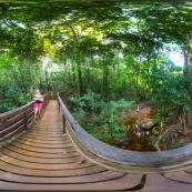 Panorama sentier du Rotota Guyane française 360° visite virtuelle avec jogger, rivière et anumaux.