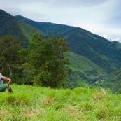 Homme dans un paturage de montagne, regardant au loin.