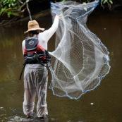 Guyane peche a l'epervier. Un pecheur lance le filet dans une crique riviere de Guyane.