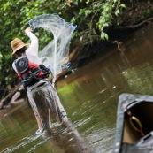 Guyane peche a l'epervier. Un pecheur lance le filet dans une crique riviere de Guyane. Canoe au premier plan.