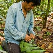 Indigene Waorani en train de tisser un sac avec des feuilles de palmier. Amerindien. Artisanat. Equateur Yasuni.
