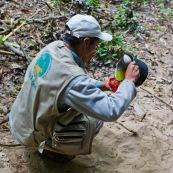 Un homme se sert d'une infusion de feuilles de coca en Bolivie.