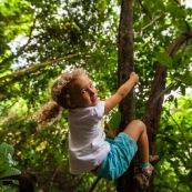 Guyane. Jeune fille enfant en train de grimper sur un arbre en foret tropicale amazonienne.