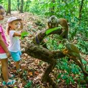 Guyane. Jeunes filles enfants avec des singes (saimiri ou singe ecureuil) sur l'ilet la mère.  Foret tropicale amazonienne. Saimiri sciureus