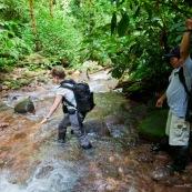 Femme et homme en train de travesrer une riviere (crique) a pied dans la foret tropicale amazonienne. Tourisme vert.