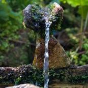 En montagne, source amÈnagÈe coulant le long d'un tronc de bois creuse. L'eau forme une petite fontaine pour se dÈsaltÈrer et se laver.