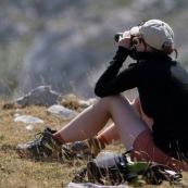 Randonneuse (randonneur) en montagne, femme observant la faune locale avec des jumelles, de trois quart dos, assise sur le sol en montagne. Recherche de chamois ou autres animaux. Observation en milieu naturel.   Parc National des Abruzzes (Parco Nationale díAbruzzo, Lazio e Molise), Italie.