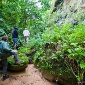 Expedition a pied en foret tropicale (jungle,) avec traversee d'une riviere. Trois personnes. Randonnee.