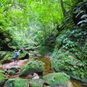 Expedition a pied en foret tropicale (jungle,) avec traversee d'une riviere. Deux personnes. Randonnee.