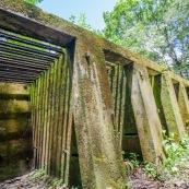 Guyane. Bagne (prison). Bagne des annamites. Le camp Crique Anguille, plus communément appelé bagne des Annamites, est un bagne français situé sur la commune de Montsinéry-Tonnegrande en Guyane. Vue sur les cellules. Tourisme historique et culturel. Graphisme.