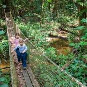 Randonnee a Saul en foret tropicale amazonienne. Riviere. Crique. Sentier Roche bateau. En famille. Avec des enfants et bebe. Pont suspendu.  Parc amazonien de Guyane.