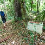 Randonnee a Saul en foret tropicale amazonienne. Parc amazonien de Guyane. Panneau delabre halte aux dechets.